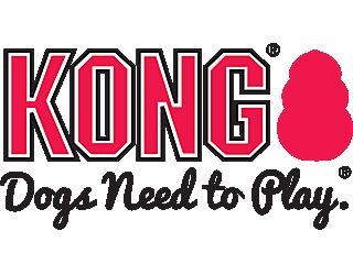 BRLOGO_KONG_20171211
